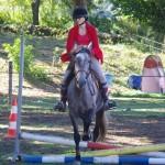 cour cheval aveyron