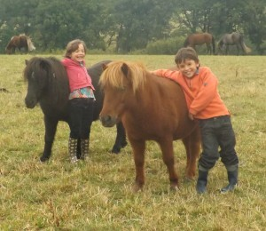 poney villefranche de panat