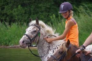 rando cheval tarn