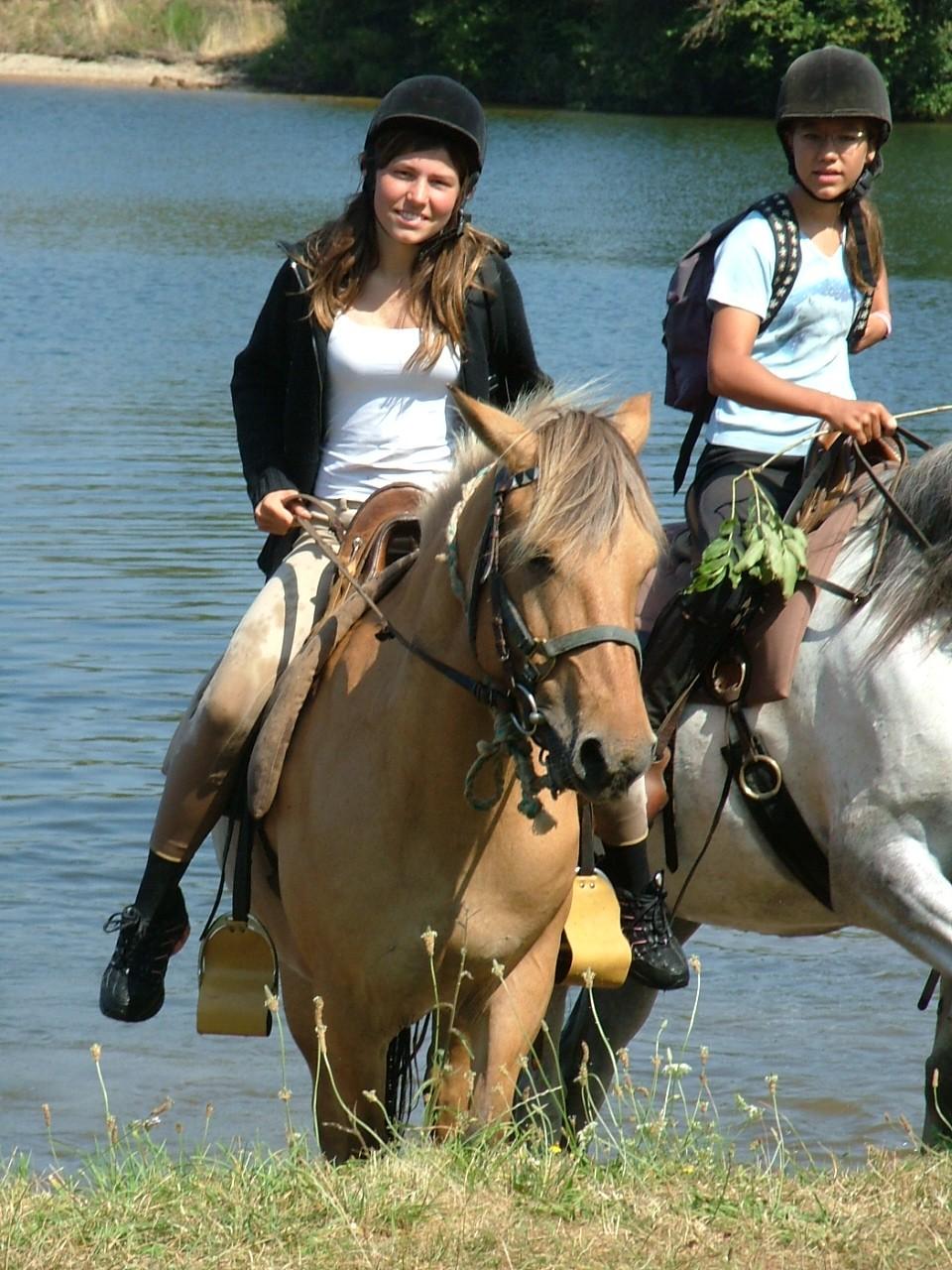 accueil de groupe à cheval